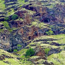Caves, Nooks and Crannies Kea'au by Craig Wood