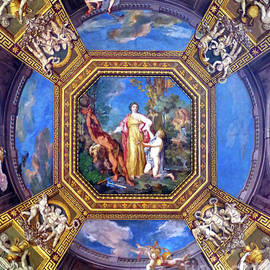 Ceiling Of The Sala Delle Muse - Vatican Museums  by Douglas Taylor