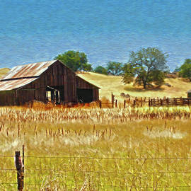 Central California Barn by Lily White