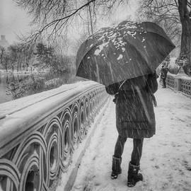 Central Park Snowfall by Miriam Danar