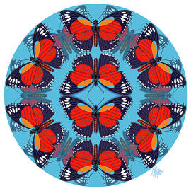 Cethosia Butterfly Mandala by Tim Phelps