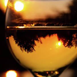 Chardonnay Sunset by David Beard