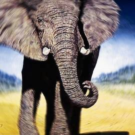 Charging  Elephant by Hartmut Jager