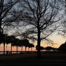 Charleston At Sundown by Lisa Lindgren