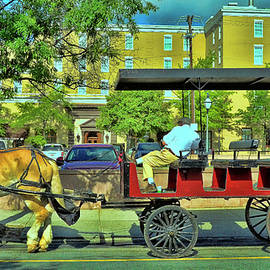 Charleston Tour Carriage Waiting by Allen Beatty