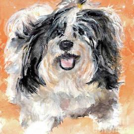 Charlie by Susan Blackaller-Johnson