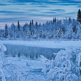 Chena River in Winter by Cathy Mahnke