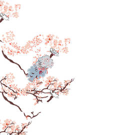 Cherry Blossoms by Marshal James