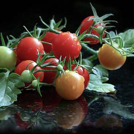 Cherry Tomato Vine by Rebecca Finley