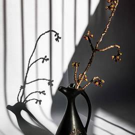 Cherry Tree Branch and Striped Shadows by Elvira Peretsman