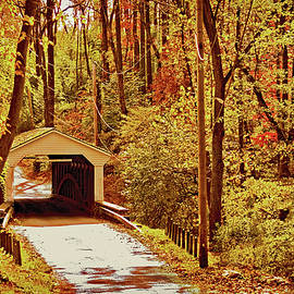 Chester County Covered Bridge by Susan Maxwell Schmidt