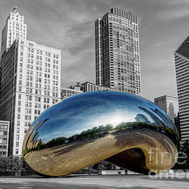 Chicago Millennium Morning Select Color by Jennifer White