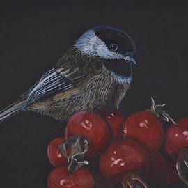 Chickadee on Berries by Jay Johnston