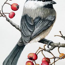Chickadee watercolor by Linda Apple