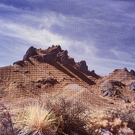 Chihuahua Desert Landscape  by Jim Cook