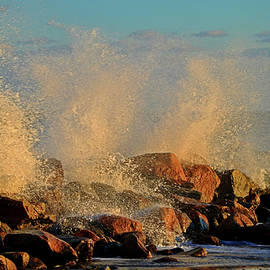 Chilly Excitement - Cape Cod Bay by Dianne Cowen
