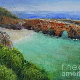 China Cove at Point Lobos by Carolyn Jarvis