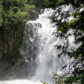 Chittenango Falls 2 by David Stasiak