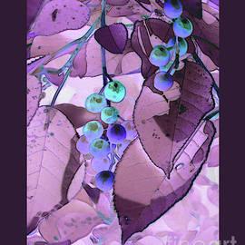 Choke Cherries by Patricia Overmoyer