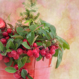 Christmas Berries by Denis O' Reilly