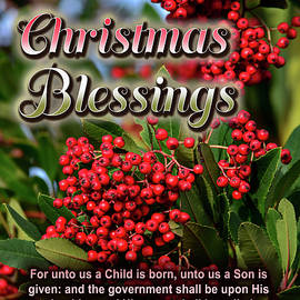 Christmas Blessings by Brian Tada