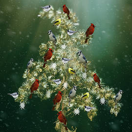 Christmas Goldenrod and Songbirds Greeting Card by Carol Senske