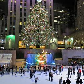 Christmas in New York City by Carol McGrath