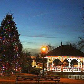 Christmas in New York - Manhasset Park by Dora Sofia Caputo
