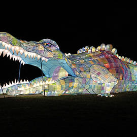 Christmas in the City 30 - Staten Island Winter Light Festival by Allen Beatty