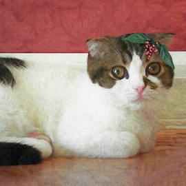 Christmas Kitty by Claudia O'Brien