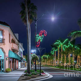 Christmas Light in Venice, Florida 2 by Liesl Walsh