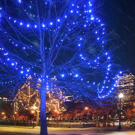 Christmas Lights on the Boston Common by Joann Vitali