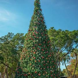 Christmas Tree at St. Armand's Circle, Sarasota, Florida by Liesl Walsh