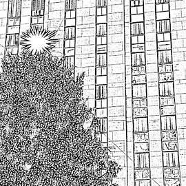 City Tree by Kenneth Keller
