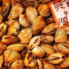 Clams at the Market - Japan by Stuart Litoff