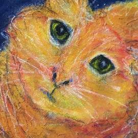 Clarence The Christmas Present Kitty Cat by Cara Schingeck