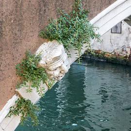 Classic Venetian - a Bridge Guardian Watching Over a Canal  by Georgia Mizuleva