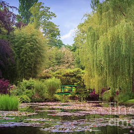 Claude Monet's Waterlily Pond, Giverny, France by Liesl Walsh