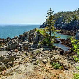 Cliffs Bold Coast by Alana Ranney