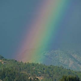 Close up of the rainbow by Brigitta Diaz