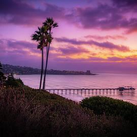 Coastal Last Light by Peng Shi