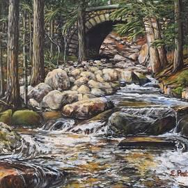 Cobblestone Bridge, Acadia National Park by Eileen Patten Oliver
