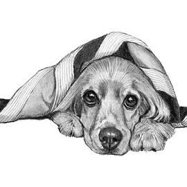 Cocker Spaniel Lying Under Blanket by Joyce Geleynse
