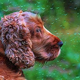Cocker Spaniel Profile impressionist by Warwick Lowe