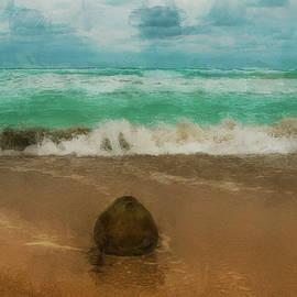Coconut on the beach Varadero by Igor Klyakhin