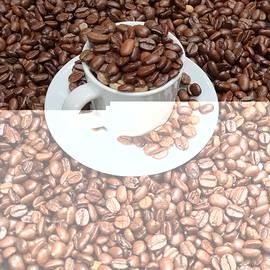 Coffee beans  by Abedalrahman Samara