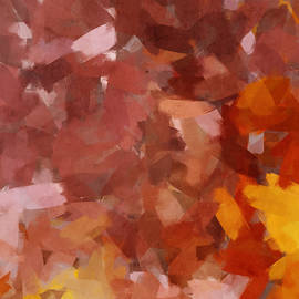 Cognac and Rose - Abstract by Western Exposure