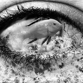 Cold eye by Ekaterina Yakshina