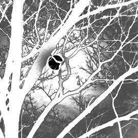 Cold Moon reversed White and black by Maureen Rose
