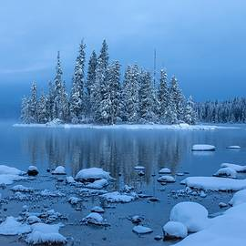 Cold winter morning  by Lynn Hopwood